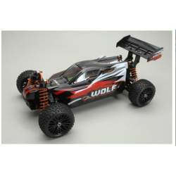 Buggy Wolf 1/10 Brushed EP 4WD RTR Euro Rc Electrico DHK