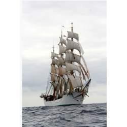 Maqueta Naval DANMARK 1/75 - Billing Boats