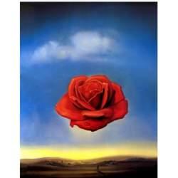 Puzzle 1000 piezas. Rose Meditative de Salvador Dalí