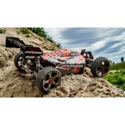 Buggy Python XP 6S Buggy 1/8 SWB Brushless RTR - Corally
