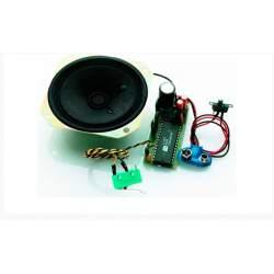 Módulo de sonido de motor de gasolina / diésel grande + bocina - KRICK